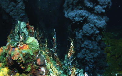 Adepth Minerals – Deep Sea Mineral Partner